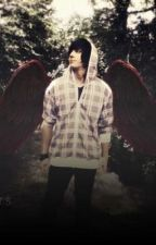 the new age of maximum ride by Imonthedancefloor