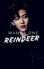 Reindeer ; Wanna One by silvuermist