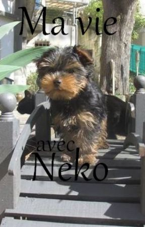 Ma vie avec Neko - Conseils canins et félins by CoralieLecler