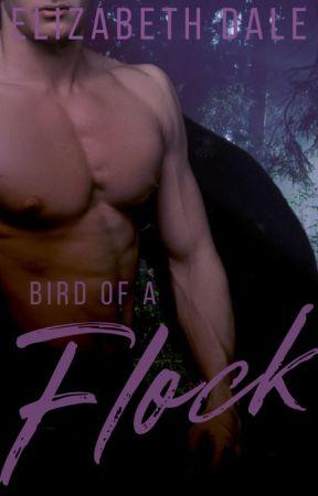 Bird of a Flock (Bow 2) by Hiddenhearts93