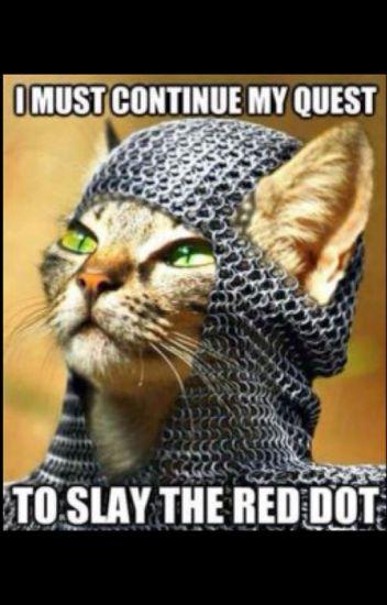 Cat vs laser pointer - 5 4