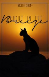 Caught In The Breeze | Warrior Cats Short Story by Nightflower-