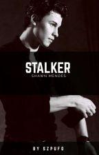 Stalker || S.M by nyskju
