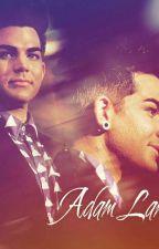 Fakty Adam Lambert  by xbbxgdrgx