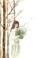 Mùa thu của cây dương. by Canmieu