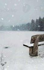 Frozen Heart  by SeesanK