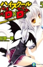 HighSchool DXD Volumen 5 - Novela ligeraria by FDHSDXDT
