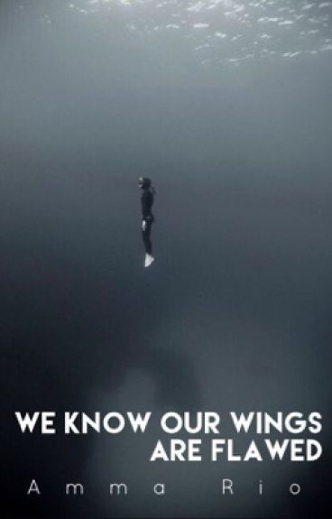 We Know Our Wings Are Flawed ((Andy Sixx)) >DISCONTINUED<