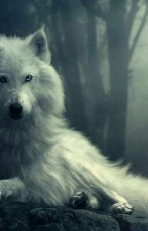 me+wolf life by Dogmastah67