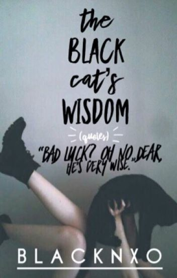 The Black Cat\'s Wisdom || Quotes - 𝐿𝒶𝒹𝓎🖤𝓁𝓊𝒸𝓀 - Wattpad