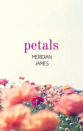 Petals by MeridianJames