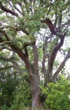 Branchy the Branch by purpleangelxx