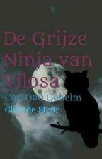 De Grijze Ninja van Vilosa Deel 1 Een Oud Geheim  by elisedesteur