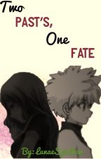 Two Past's, One Fate {Hunter x Hunter (Killua x Reader)} by LunaeSpiritum