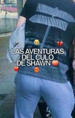 Las aventuras del culo de Shawn © by ELCUL0DECH0N