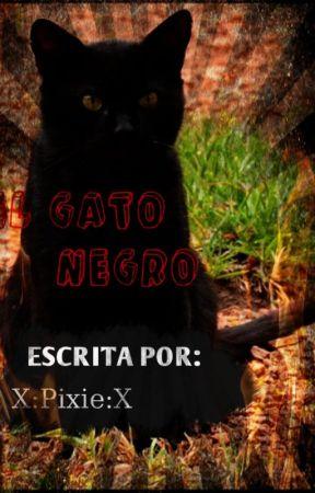 El Gato Negro | by Yukari777xd