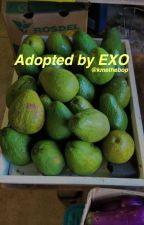 Adopted By EXO by Kmethebop