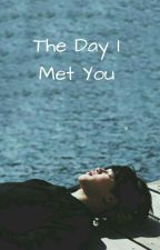 The Day I Met You (Jimin X Reader) by Yoongi-Min93