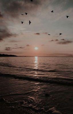 Đọc truyện ■[DRABBLES][MINAYEON] CẶP ĐÔI SONG SINH