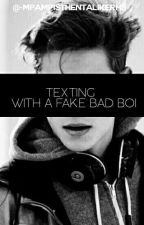TEXTING WITH A FAKE BAD BOI by MpampistheNtalikerhs