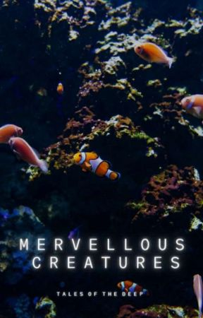 Mervellous Creatures by talesofthedeep