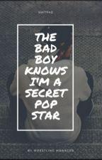 The Bad Boy Knows I'm A Secret Popstar  by WrestlingManager