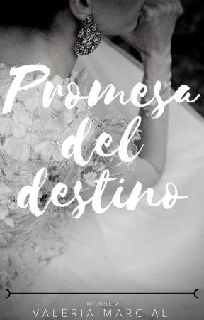 Promesa del Destino by turtle_v