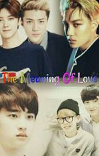 💖💖💖The Meaning of LOVE💖💖💖(Completed) by SuHanHunnie
