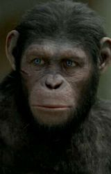 We Are All Survivors   [Blue eyes planet of the apes] by PlanetOfTheApesFan