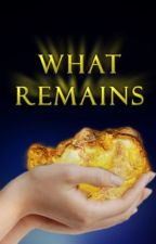 What Remains by stormvisions