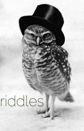 A Book of Riddles  by BaudelaireRavenclaw