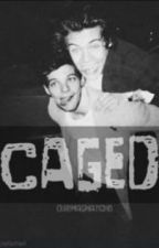 Caged   //Larry Stylinson by our_imaginations
