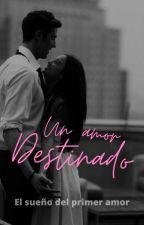 Un Amor Destinado by MaribelBottoni