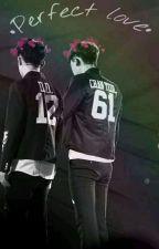 Perfect love [Chansoo] ♡ by Lizzy_uwu