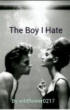 The Boy I Hate (Completed And Slowly Editing) by wildflower0217