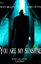 You are my sunshine by LerDan