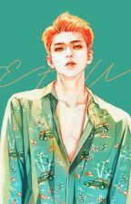 Knowing Sehun (Chanhun/ Oneshot) by KiroshiSempai13