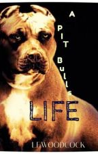 A Pit Bulls Life (short story) by Wulfenite