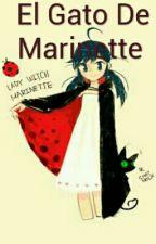 El Gato De Marinette  by gabykawaii13