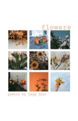 🌹 Flowers 🌹 by flowerlesss
