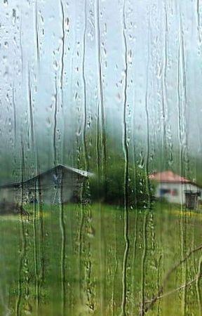 Mi amiga .... la lluvia. by DDavidR