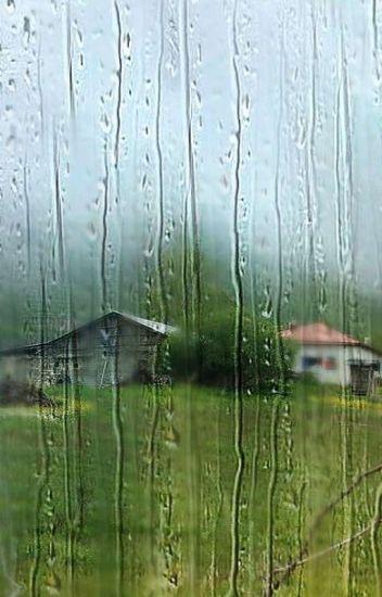 Mi amiga .... la lluvia.