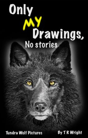 Only my drawings, No stories by TRWright1