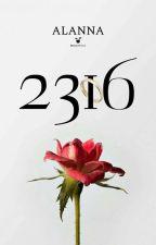 2316 by Alanna472