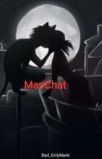 Marichat story [SK] by MarinetteYTB
