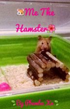🐹Me the hamster🌺 by pbemba