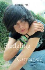 Fledgling Romance (BoyxBoy) by 1HellOfAButler