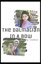 The Dalmatian In A Bow by -CrossBones-