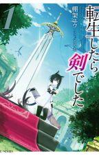 I Was a Sword When I Reincarnated [Tensei Shitara Ken Deshita] by kyouhaku