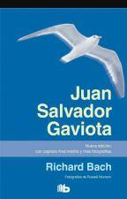 resumen juan salvador gaviota by Levi_Ackerman123